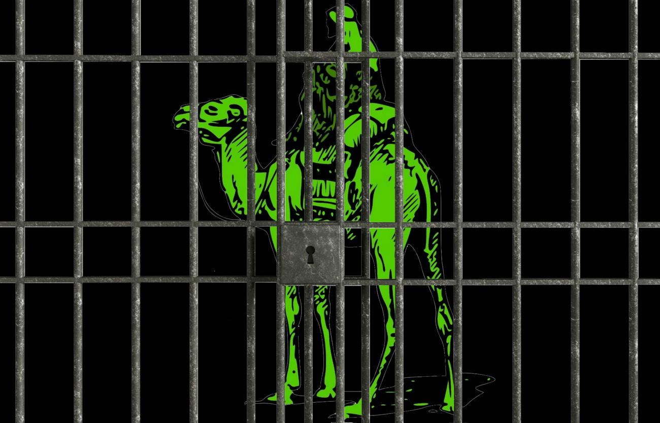Основатель جاده ابریشم 2 приговорен к пяти годами лишения свободы